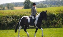 Amelia competing at Laxton Show